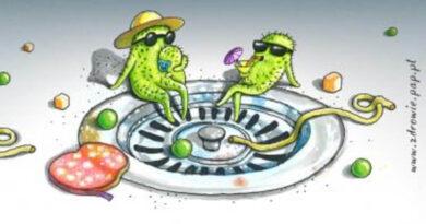 Bakterie w kuchni