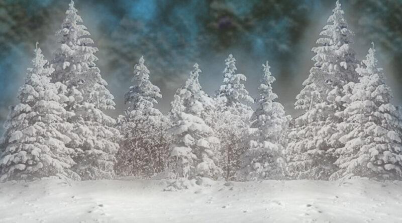 Zima i groźne odmrożenia