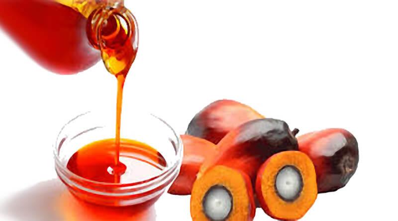 olej palmowy nierafinowany