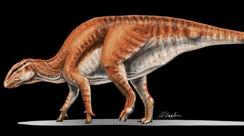 Dinozaur Gobihadros